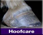 Natural Hoofcare