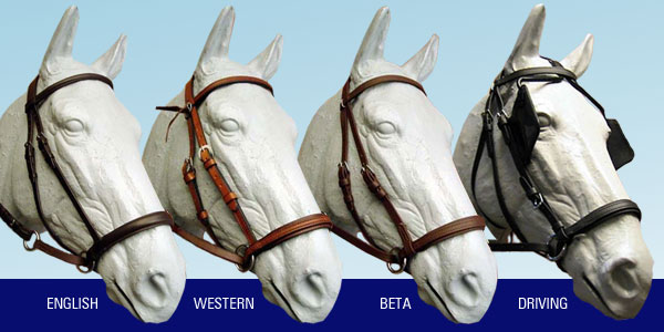 Dr Cook Bitless Bridles