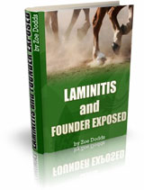 Laminitis and Founder Exposed