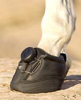 boa boot fit